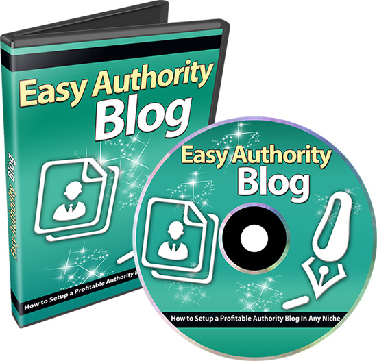 Authority Blog Income Profits